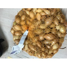 Cibuľa sadzačka ozimná Sheaspeare 500 g